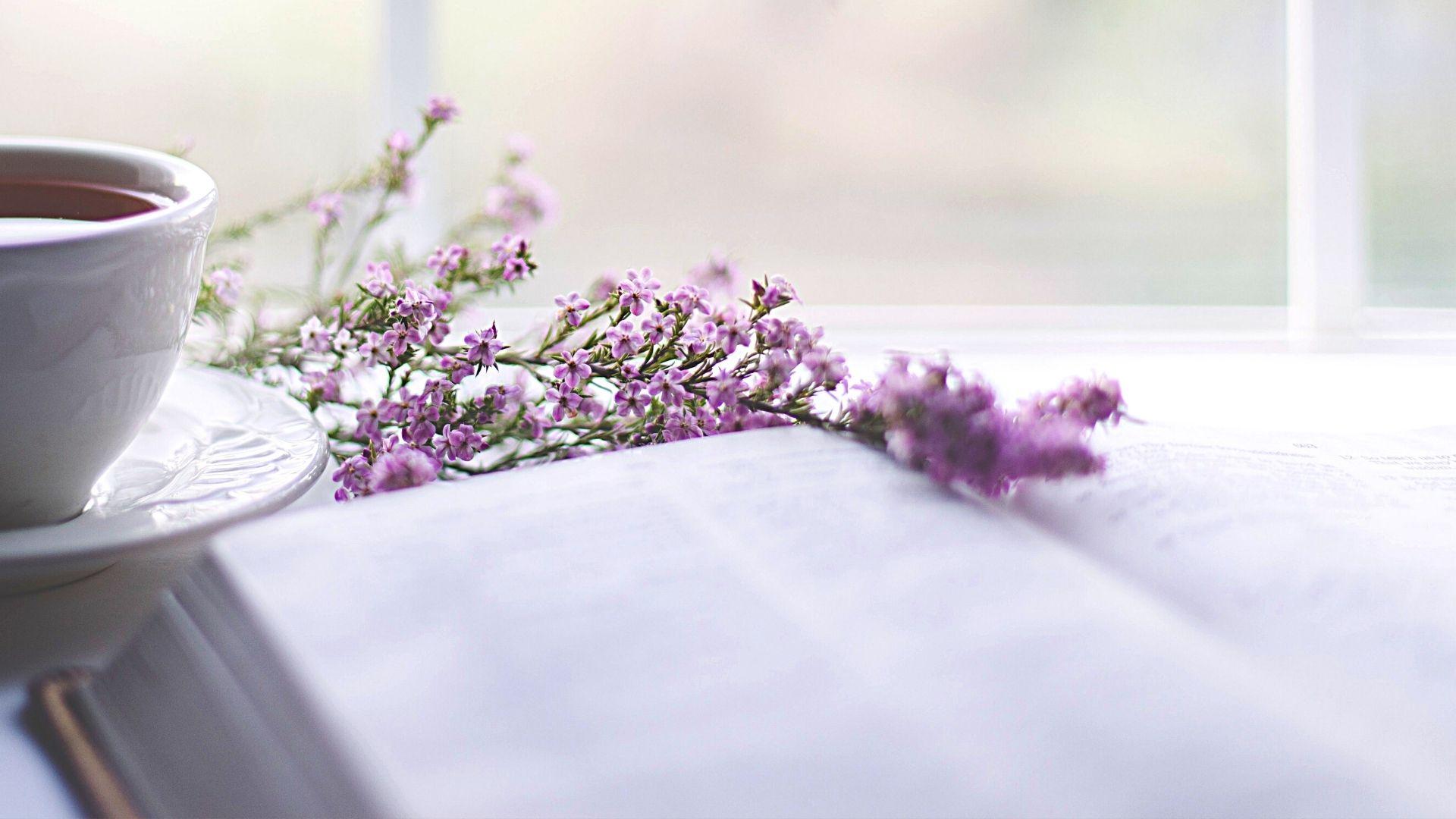 5легких романов свесенним настроением